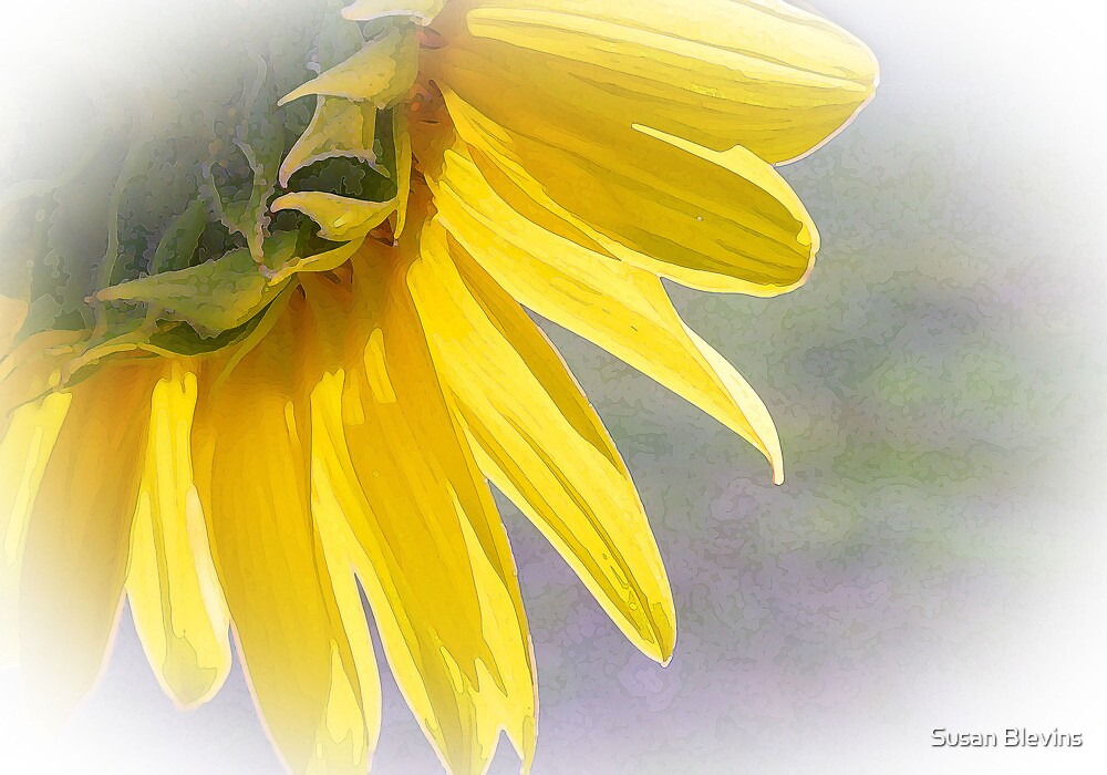 The Essence of Light by Susan Blevins
