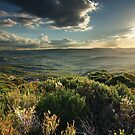 View from Narrow Neck, Blue Mountains, Australia by Roger Barnes