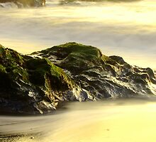 Beach Rock Exposure - Fort Bragg, CA by Scott Loucks