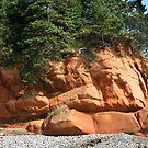 Red Rocks Pot by L J Fraser
