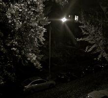 Oak Street NW Washington DC by mounmoun