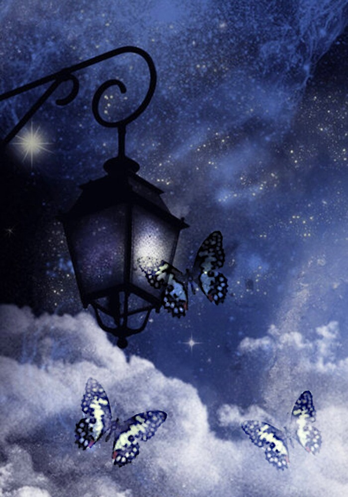 A MAGICAL EVENING by Tammera
