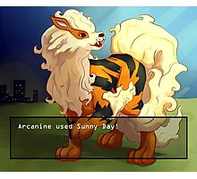 Arcanine used Sunny Day! Photographic Print