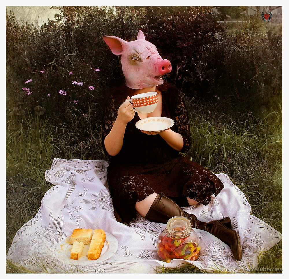 Teacup Pig by strawberries