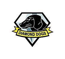 Diamond dogs (high resolution) Photographic Print