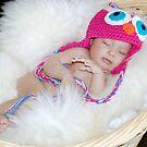 Sleepy little owlet by Michelle *