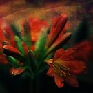 A moment in time by Colleen Milburn