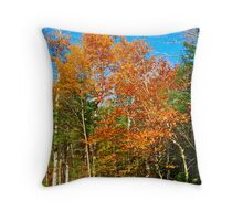 Not Yet, Damn Your Eyes, Not Yet! Throw Pillow