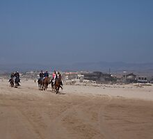 Horses at Pismo Beach by Renee D. Miranda