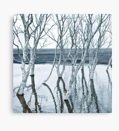 hvítt og dauður Canvas Print