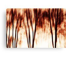 shadows of trees I Canvas Print