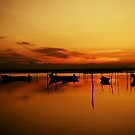 Laguna de Tamiahua by Pandrot