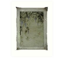 The beauty of wisteria Art Print