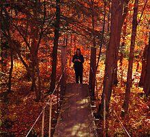 First Fall Shot - Dedicated to Viv by teresa731