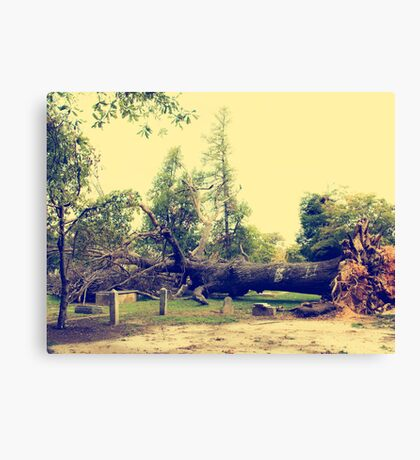 Mother Nature strikes Canvas Print