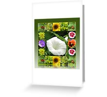 End of Summer Floral Collage in Reflection Frame Greeting Card
