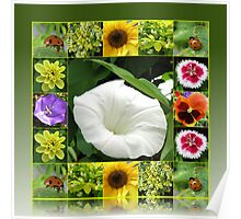 End of Summer Floral Collage in Reflection Frame Poster