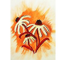 3 big head daisies, orange backround, watercolor Photographic Print