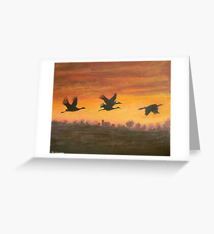migration at sunset Greeting Card