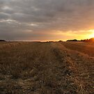 Sunset over harvested field by Charles Howarth