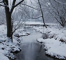 Yankee Hill Stream, In Winter by Jennifer P. Zduniak