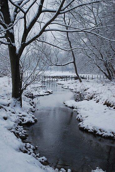 Yankee Hill Stream, In Winter by Jennifer P. Zduniak