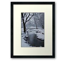 Yankee Hill Stream, In Winter Framed Print
