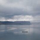 silverwater by helveticaneue