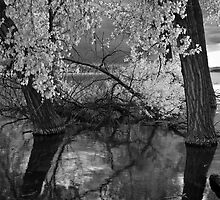Black and White Lake Intimate by Paul Gana