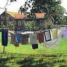 Amana Laundry by Randy Sprout