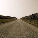 Middle of the Road by Jennifer P. Zduniak