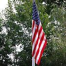 Our United States Flag by Jennifer P. Zduniak