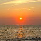 Cape May NJ, Sunset by Jennifer P. Zduniak