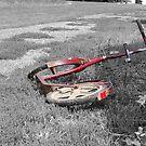 One Red Scooter by Jennifer P. Zduniak
