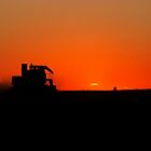 Harvest Sunsets by Steph Peesker