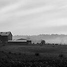 Farm in fog by Jennifer P. Zduniak