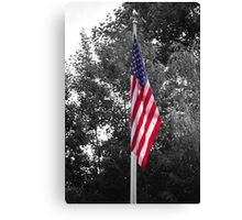 Color Flag in a Black and white world Canvas Print