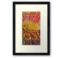 Sunflower Splash Framed Print