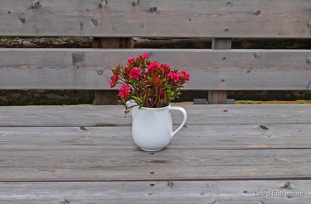 Alpine Roses in a Vase. by Lee d'Entremont