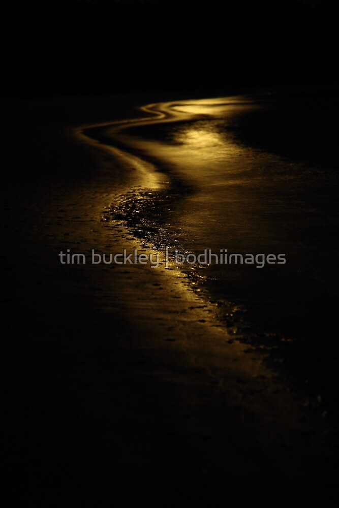 moon light. anderson inlet, victoria by tim buckley | bodhiimages