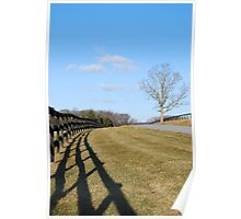 Shadowy Fence Poster