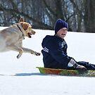 Casey sledding is VERY afraid by Jennifer P. Zduniak
