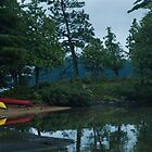 Cottage Neighbours Kayaks by JimSanders