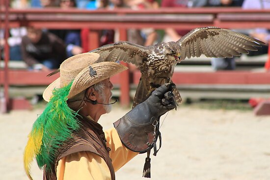 Ray Pena Master Falconer by Marija