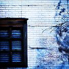blue abandoned window by nessbloo