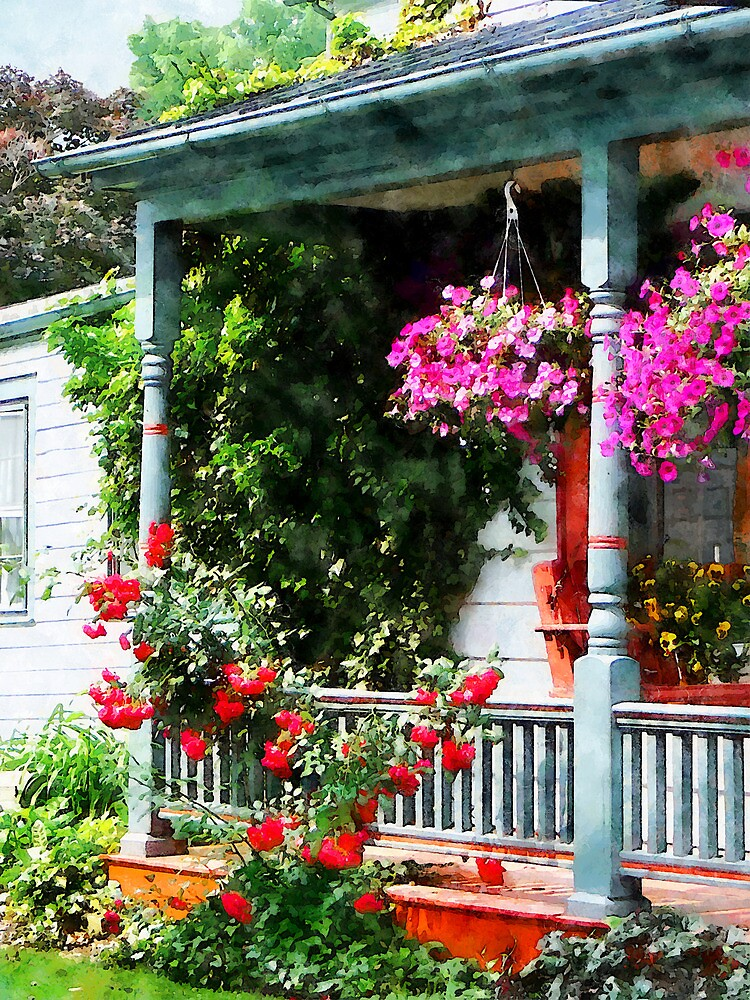 Hanging Baskets and Climbing Roses by Susan Savad