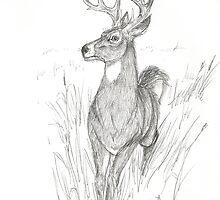 Buck in Calm Flight by RoyceRocks