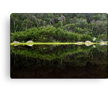 Tidal Mirror Canvas Print