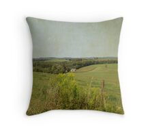 More Scenery on the Rural Road Throw Pillow