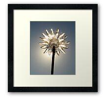 Glass Flower Sparkling Framed Print